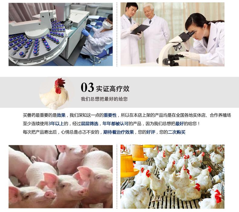 买猪药,猪催肥,兽药,和协动保,肥猪散