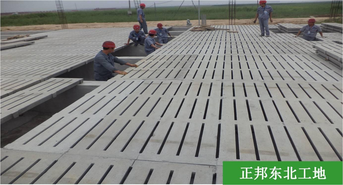 增鑫牧业 优质特种猪牛羊用水泥漏粪板 猪场水泥地沟板