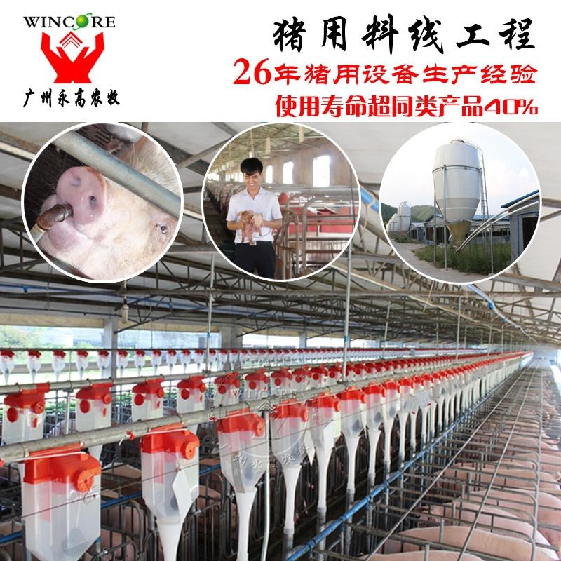 猪用自动输送喂料系统 自动供料系统 猪场自动喂料系统设备厂家