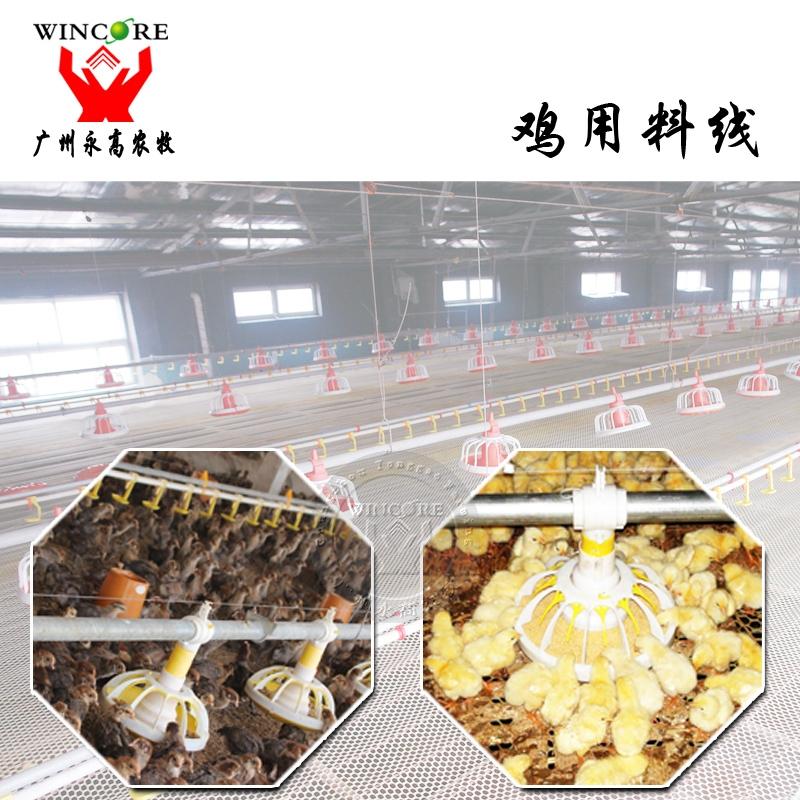 全自动化肉鸡养殖设备 种鸡鸭盘式料线水线 肉鸡自动喂料系统