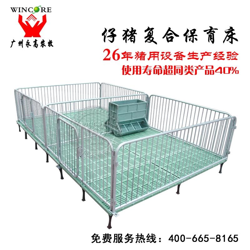 优质复合仔猪保育床 小猪保育栏 子猪保育栏厂家 仔猪高培床