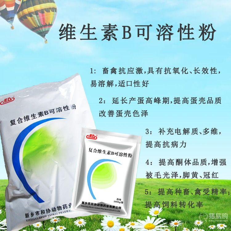 和协药业 复合维生素B可溶性粉 20袋/箱  包邮