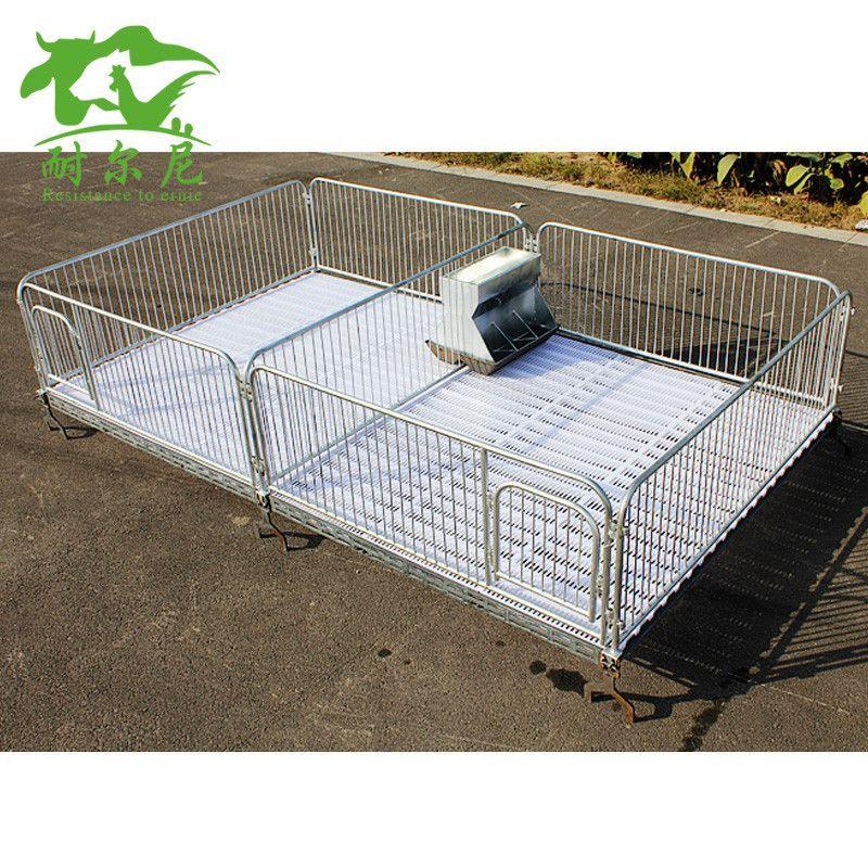 【冠江】猪用保育床 猪产床 仔猪保育床 断奶仔猪保育床 养殖设备器械