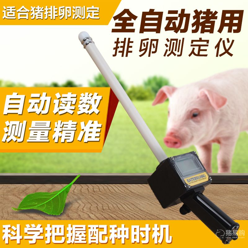 倍特双母猪用发情排卵测定仪 鉴定仪检测仪 家畜 配种 仪器