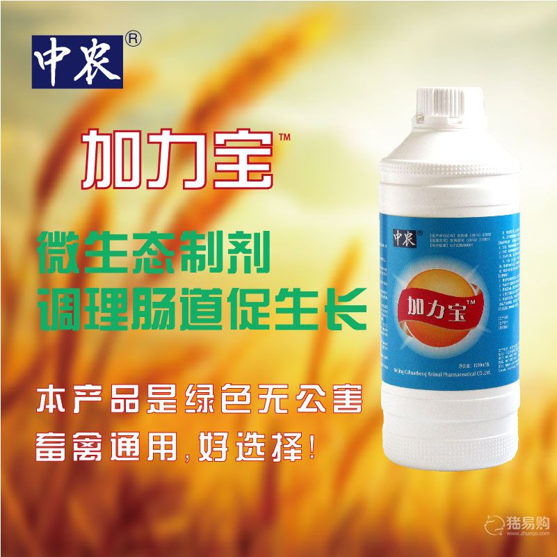 【中农兽药】【加力宝】 菌制剂 改善养殖环境 养殖动物 微生态 添加剂1000ml/瓶
