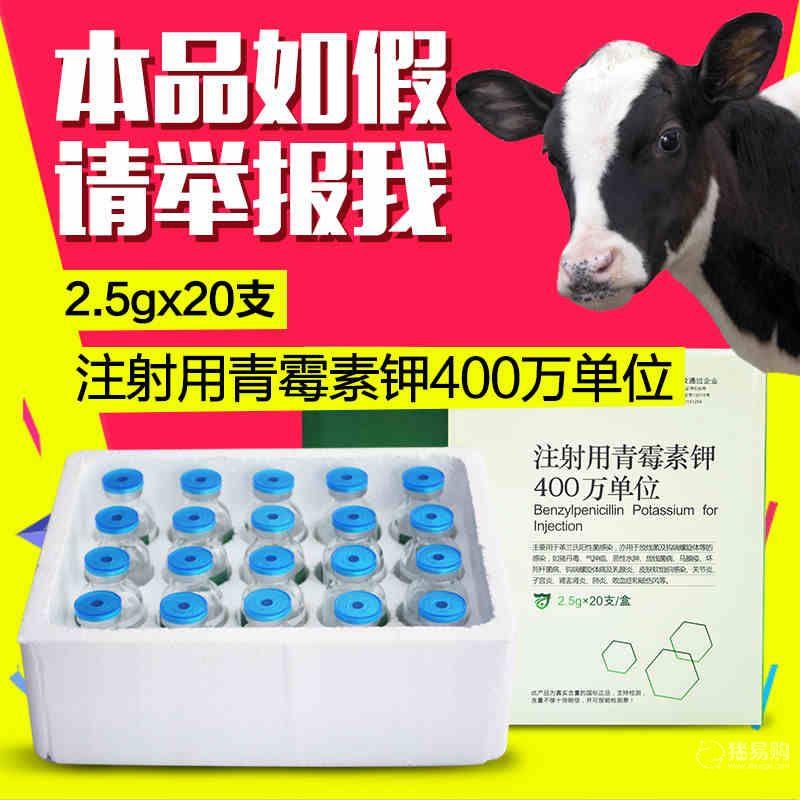 【华畜】400万单位注射用青霉素钾  猪药兔鸡药禽药牛羊药