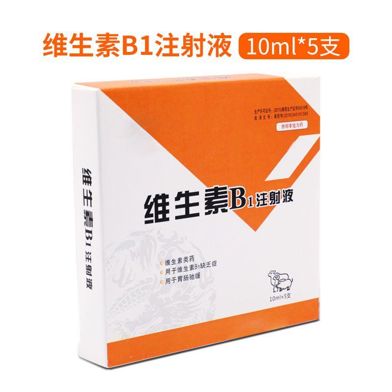 【华畜】维生素B1注射液 维生素B1消化不良运动失调抽搐