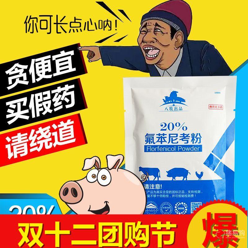 20%氟苯尼考粉 兽用呼吸道兽药 猪药牛羊药禽药鸡药气喘咳嗽