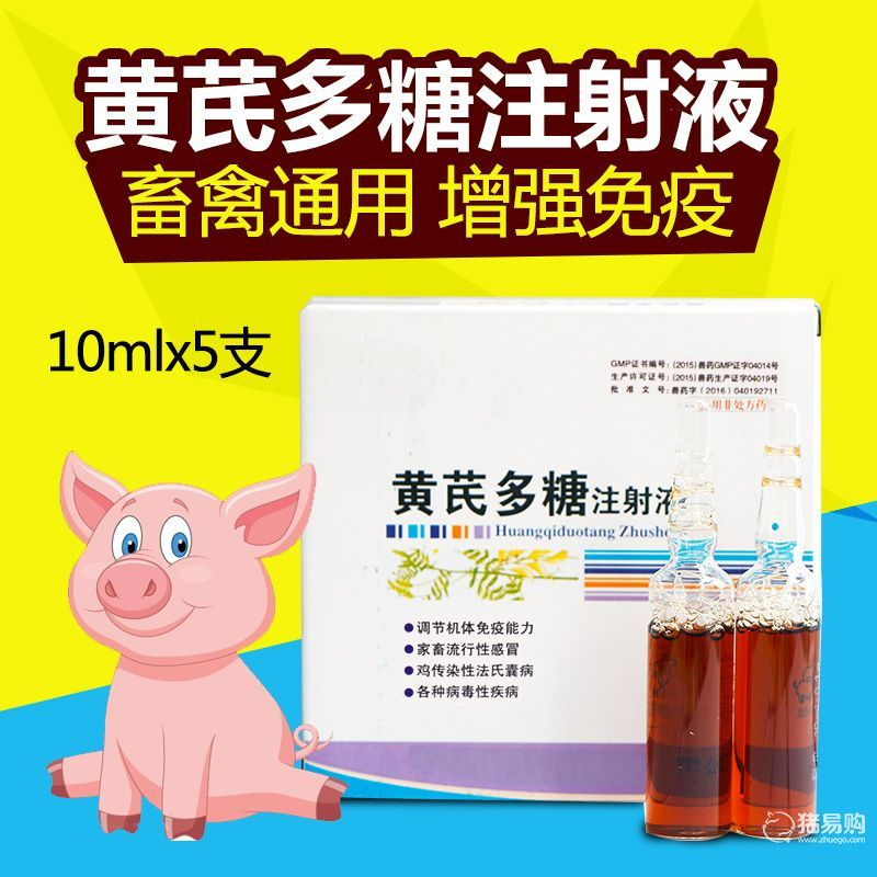 【华畜】黄芪多糖注射夜     兽用针剂 稀释头孢