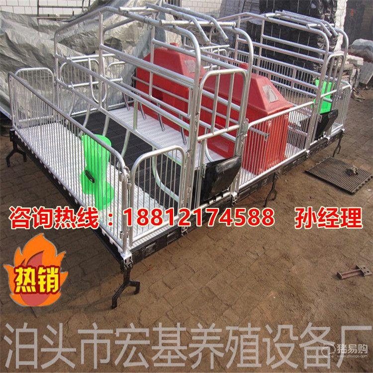 供应母猪产床价格  双体猪产床出售 猪产床专业生产厂家泊头宏基