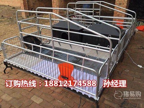 优质的母猪产床生产厂家 猪用产仔栏 猪床批发 母猪猪栏厂家供应