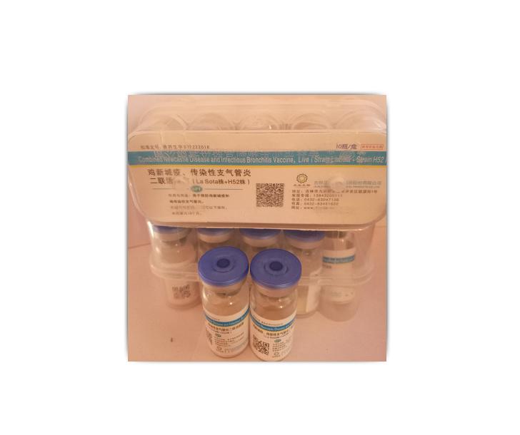 【吉林正业】新支H52用于预防鸡新城疫和鸡传染性支气管炎。