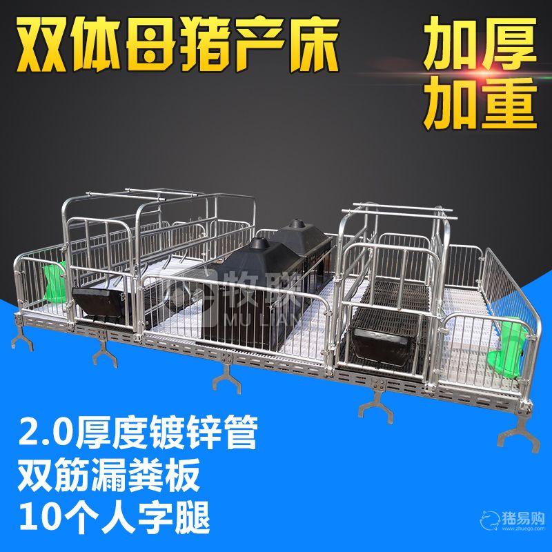 牧联 双体母猪产床  猪产床  猪用母猪产床  母猪分娩床  防止夹奶头母猪 产床
