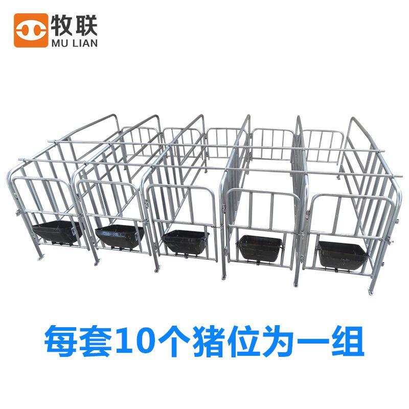 母猪定位栏  10个猪位一组 带食槽  母猪限位栏