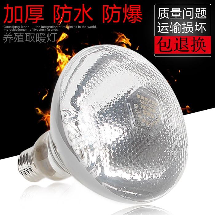 猪博士灯泡 取暖灯泡 养殖灯泡