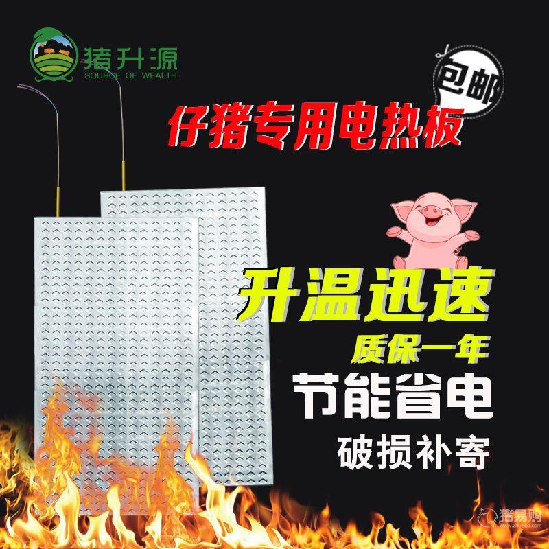 【猪升源】不锈钢电热板 养殖取暖电热板55*100